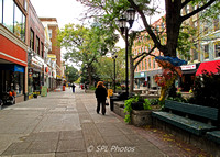 Ithaca Commons 2